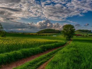 обои для рабочего стола: Дорога под облаками в поле