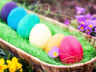 обои Шеренга раскрашенных яиц фото