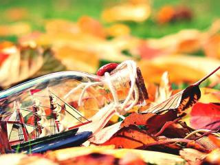 обои Яхта в бутылке на осенней листве фото