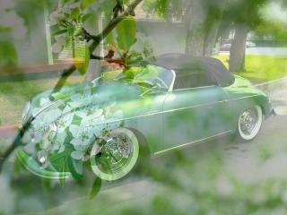 обои Весеняя машина на фоне зеленой весны фото