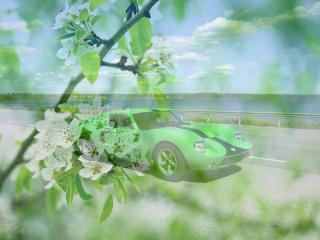 обои Зеленый порше - на фоне зеленой весны фото