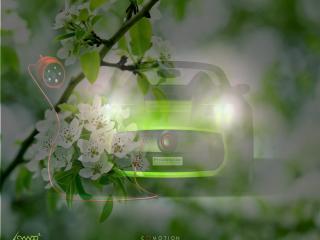 обои Зеленый спорт кар - на фоне зеленой весны фото