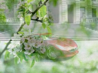 обои Низко посаженная машина - на фоне зеленой весны фото