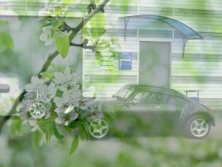обои Скоростной мини - на фоне зеленой весны фото