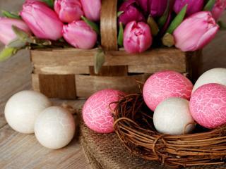 обои Яйца в гнезде тюльпаны в лукошке фото