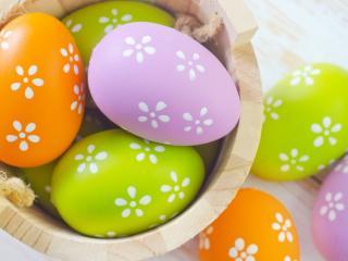 обои Яйца в кадушке раскрашенные цветами фото
