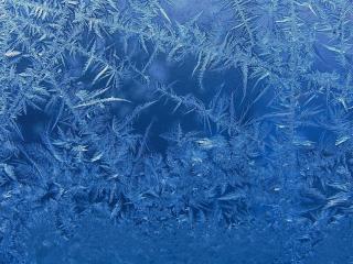 обои Морозное творение фото