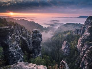 обои Каменные столбы над лесом фото