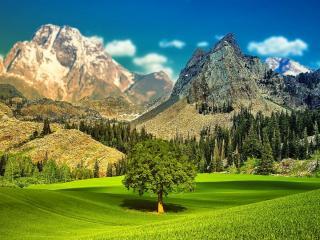 обои Живописные зеленые горы фото