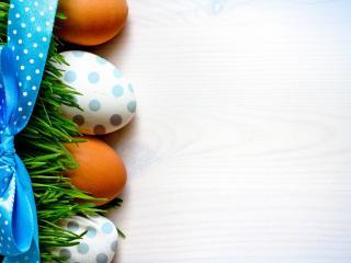 обои Яйца в траве с ленточкой фото