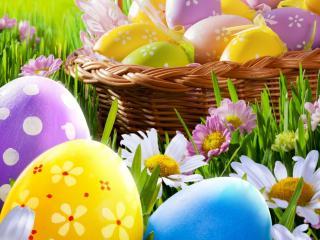 обои Крашенные яйца и летние цветы фото