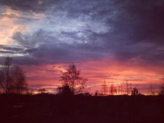 обои Весенний закат фото