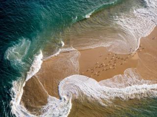 обои Морской берег фото