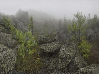 обои Весенний туман в горах фото