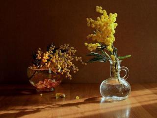обои Натюрморт - Две вазочки с мимозой фото