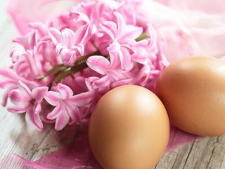 обои Свежие яйца и нежные цветы фото