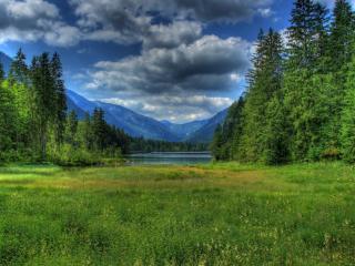 обои Зеленый исток горной реки фото