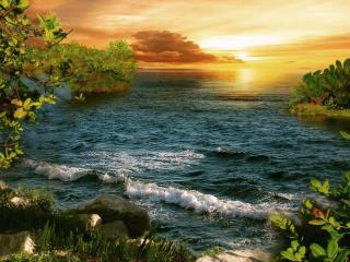 обои Золотой закат в раю фото