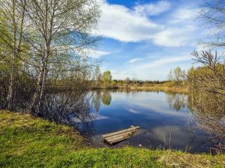 обои Весенний день на озере фото