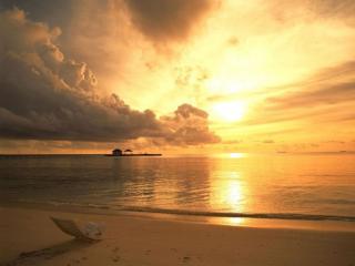 обои Золотой морской закат фото
