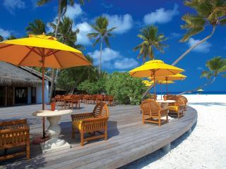 обои Открытое кафе на тропическом пляже фото