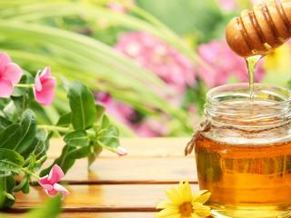 обои Баночка меда и цветы фото