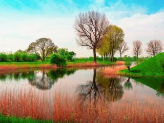 обои Английская весна на реке фото
