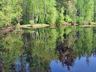 обои Весна на реке Нерской фото