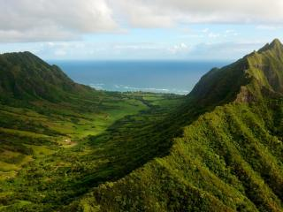 обои Зеленая гряда у океана фото