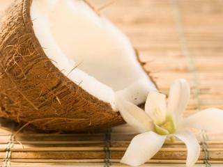 обои Цветок и кокос фото