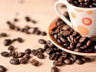 обои Чашка полная зерен кофе фото