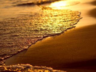 обои Золотой прибой на песке фото