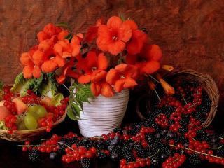 обои Натюрморт - Обилие ягоды и красные цветы фото