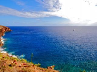 обои Одинокий парус в живописном заливе фото