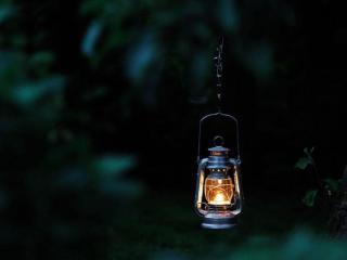 обои Одинокий в ночи фото