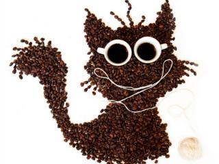 обои Весёлый кофе фото