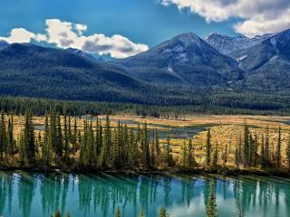 обои Исток реки у хвойной горы фото