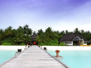 обои Мостик к тропическому раю фото