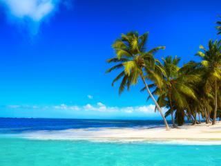 обои Маленький остров с пальмами в тропиках фото