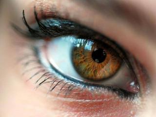 обои Карие глаза фото