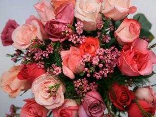 обои Букет из роз фото