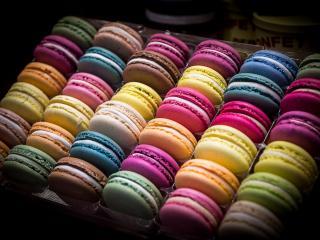 обои Разноцветное печенье в лотке фото