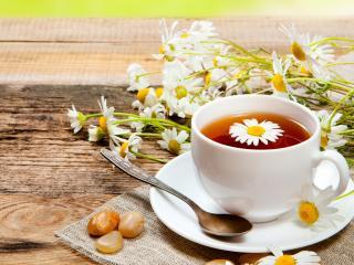 обои Ромашковый чай в белой кружке фото