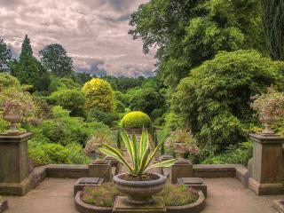 обои Убранство сада с видом на деревья фото