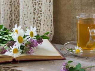 обои Натюрморт - Зеленый чай и полевые цветы фото