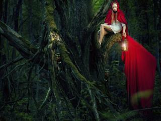 обои Девушка с фонарем в дремучем лесу фото