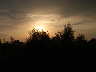 обои Уходящее вдаль солнце фото