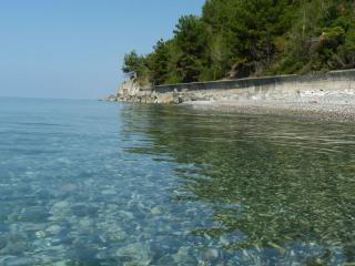 обои Берег моря в Абхазии фото