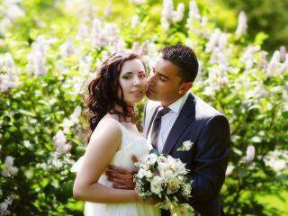 обои Сиреневая свадьба фото