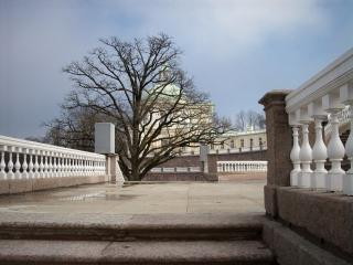 обои Дворцовая лестница. Санкт-Петербург фото
